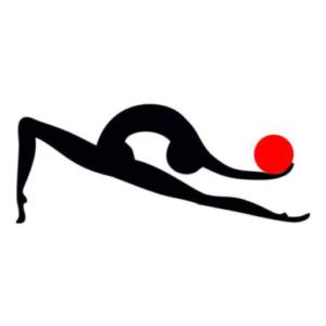 徳島の新体操クラブ